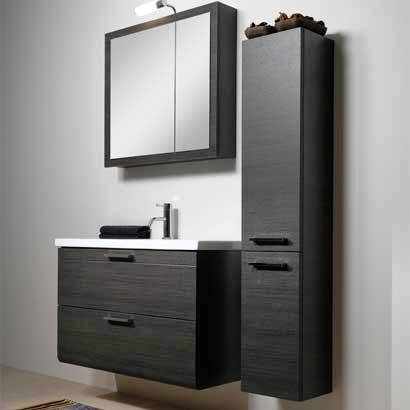 Exceptionnel Bathroom Vanities Cabinets